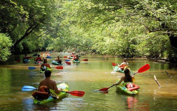 Kayaking Trip Basics